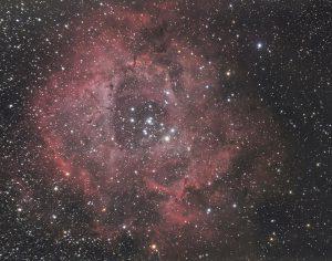 Rosette Nebula (NGC 2239)